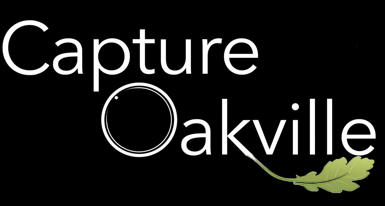 Capture Oakville 2021 Virtual Exhibition