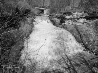 Beamer Conservation Area and Falls  2017-05-31
